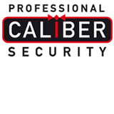 Professional Caliber Security